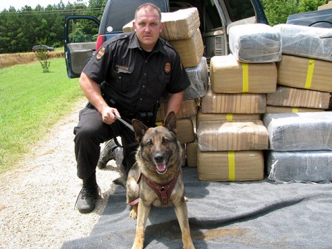 "Trooper Brad Atkinson and his K-9 ""Charlie"" with the marijuana seized Friday morning."