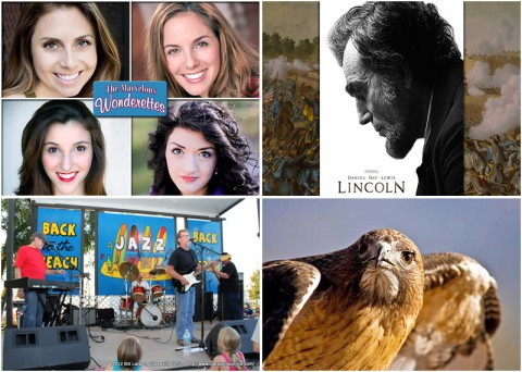 "Clarksville Events this weekend include ""The Marvelous Wonderettes"" at the Roxy Theatre, ""Lincoln"" at Movies in the Park, ""Joe Gibson"" playing at Jazz on the Lawn and ""Birds of Prey"" at Dunbar Cave."