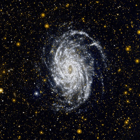This image from NASA's Galaxy Evolution Explorer shows NGC 6744, one of the galaxies most similar to our Milky Way in the local universe. This ultraviolet view highlights the vast extent of the fluffy spiral arms, and demonstrates that star formation can occur in the outer regions of galaxies. (Image credit: NASA/JPL-Caltech)