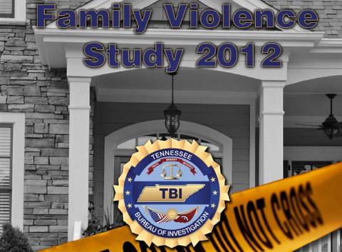 TBI Family Violence Study 2012