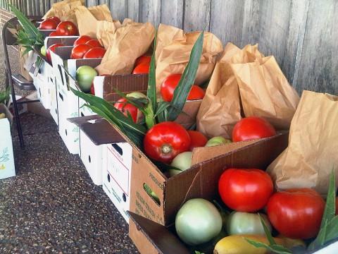 Lylewood Inn Bed & Breakfast's Farm Day Market this Saturday.