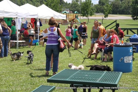 Pets and their owners at Doggie Palooza