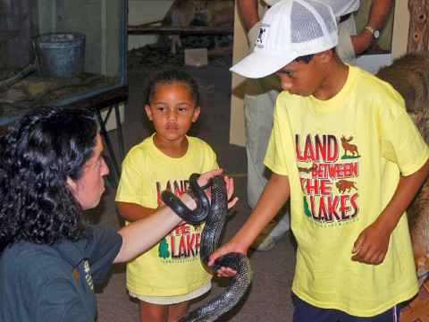 Learn About Snakes at LBL's Cool & Crawly Critters Day. (Land Between the Lakes)