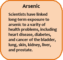 Arsenic's Effects in Humans