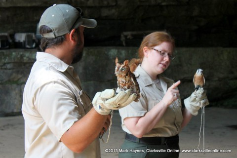 Rebecca Davenport of Paris Landing State Park and Shawn Settle, Dunbar Cave Seasonal Interpretive Ranger will be doing a Birds of Prey Program Saturday, August 24th.