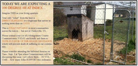 Montgomery County Government to Vote on Ordinance Requiring Shade for Outdoor Dogs