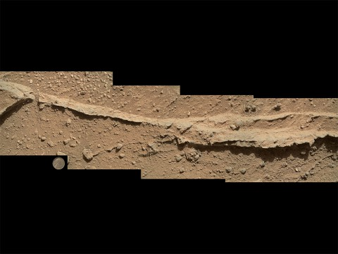 "This mosaic of four images taken by the Mars Hand Lens Imager (MAHLI) camera on NASA's Mars rover Curiosity shows detailed texture in a ridge that stands higher than surrounding rock. The rock is at a location called ""Darwin,"" inside Gale Crater. (NASA/JPL-Caltech/MSSS)"