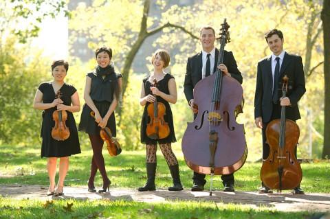 Toomai String Quintet