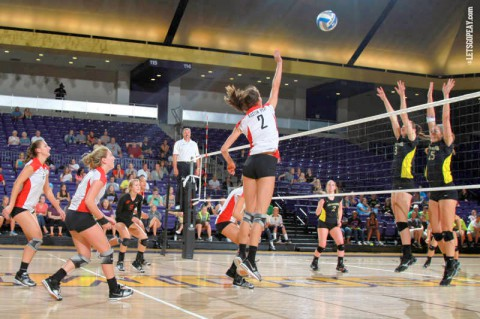 Austin Peay Women's Volleyball eliminated from OVC Tournament. (APSU Sports Information)