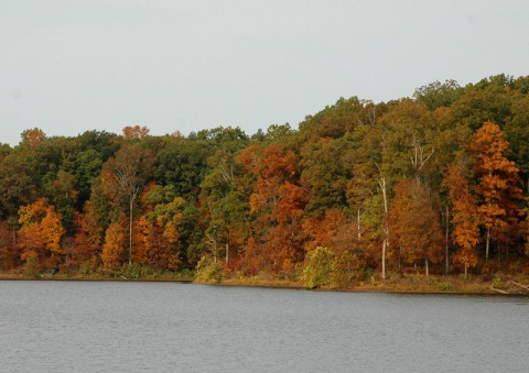 Fall Colors at Land Between the Lakes.
