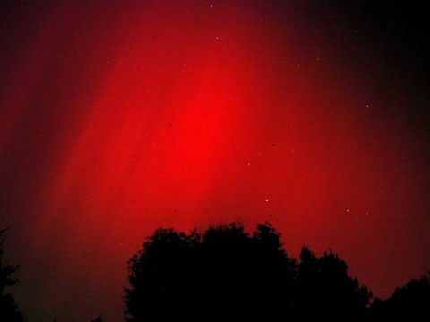 Blood-red auroras over Maryland on Halloween 2003. (Credit: George Varros)