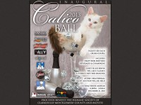 Celebrate the New Year at the Calico Ball