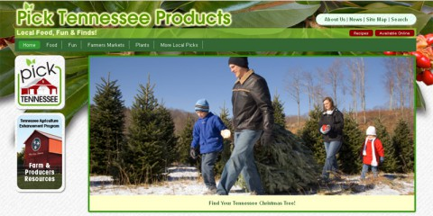 Pick Tennessee's new website look.