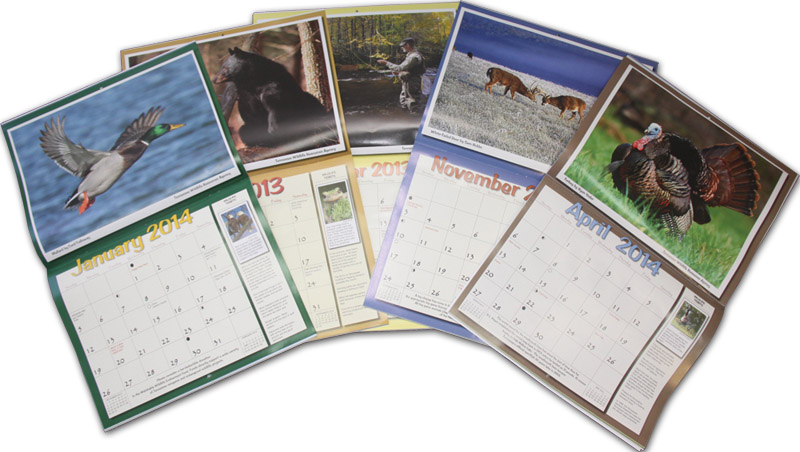Calendar Photography Submissions : Tennessee wildlife magazine archives clarksville tn online