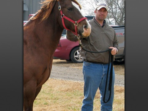 Austin Peay Agriculture professor Dr. Rodney Mills with a brown horse. (APSU)