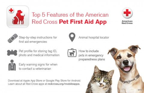 Top 5 Features of the American Red Cross Pet First Aid App