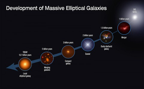 This graphic shows the evolutionary sequence in the growth of massive elliptical galaxies over 13 billion years, as gleaned from space-based and ground-based telescopic observations. The growth of this class of galaxies is quickly driven by rapid star formation and mergers with other galaxies. Image Credit: NASA, ESA, S. Toft (Niels Bohr Institute), and A. Feild (STScI)