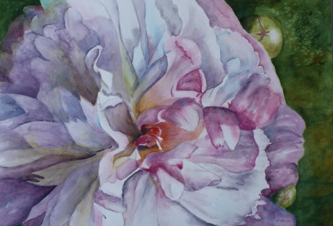 'Close-Up' Watercolors by Patsy Sharpe Exhibit at Planters Bank during March