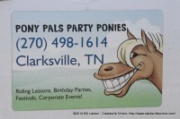Pony Pals Party Ponies and Friends