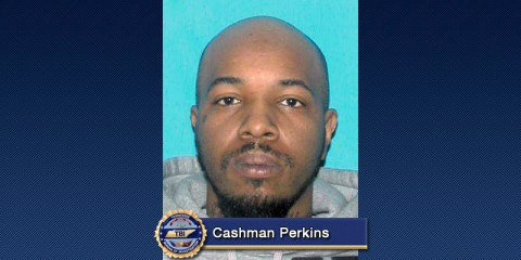 Cashman Perkins