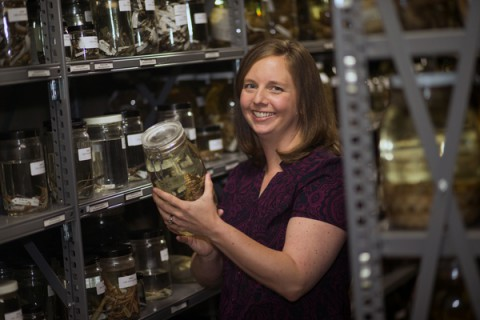 A photo of Rebecca Johansen was staged for the biology research portfolio on Thursday, July 3, 2014. (Taylor Slifko/APSU)