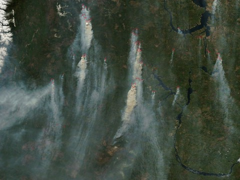 Scientists will use measurements from the Orbiting Carbon Observatory-2 to track atmospheric carbon dioxide to sources such as these wildfires in Siberia, whose smoke plumes quickly carry the greenhouse gas worldwide. The fires were imaged on May 18 by NASA's Moderate Resolution Imaging Spectrometer instrument on the Terra satellite. (NASA/LANCE/EOSDIS Rapid Response)