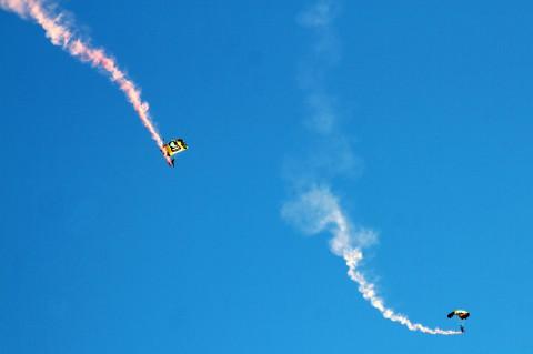 "101st Airborne ""Screaming Eagles"" parachute team"