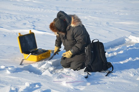 Matthew Sturm of the University of Alaska Fairbanks, a co-author of this study, takes a snow measurement on sea ice in the Beaufort Sea in March 2012 during the BROMEX field campaign. (U.S. Army Cold Regions Research and Engineering Laboratory)