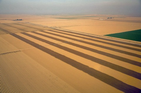 "For several months, California has been in a state of ""exceptional drought."" The state's usually verdant Central Valley produces one-sixth of the U.S.'s crops. (White House via Wikimedia Commons)"