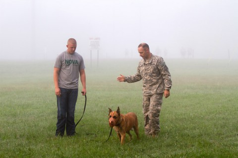 Staff Sgt. Jonathan Rose, the kennel master for the 510th Military Police Detachment, 716th Military Police Battalion, supported by the 101st Sustainment Brigade, 101st Airborne Division, gives instruction to Pfc. Jared Bridges, a dog handler also with the 510th MP Det., during a retirement assessment for Arno, a military working dog, Sept. 4 at Fort Campbell, Ky.  (Sgt. Leejay Lockhart)