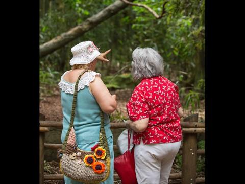 Senior Day at the Nashville Zoo. (Amiee Stubbs)
