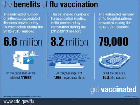 CDC Statics on the Flu