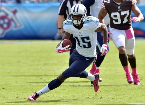 Tennessee Titans wide receiver Justin Hunter (15) carries the ball after a reception against the Cleveland Browns during the first half at LP Field. The Browns beat the Titans 29-28. (Don McPeak-USA TODAY Sports)