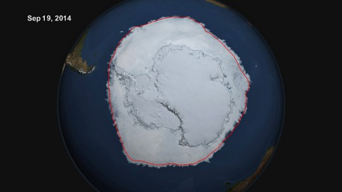 On Sept. 19, 2014, the five-day average of Antarctic sea ice extent exceeded 20 million square kilometers for the first time since 1979, according to the National Snow and Ice Data Center. The red line shows the average maximum extent from 1979-2014. (NASA's Scientific Visualization Studio/Cindy Starr)