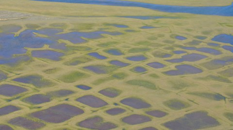 This photo taken during the CARVE experiment shows polygonal lakes created by melting permafrost on Alaska's North Slope. (NASA/JPL-Caltech)