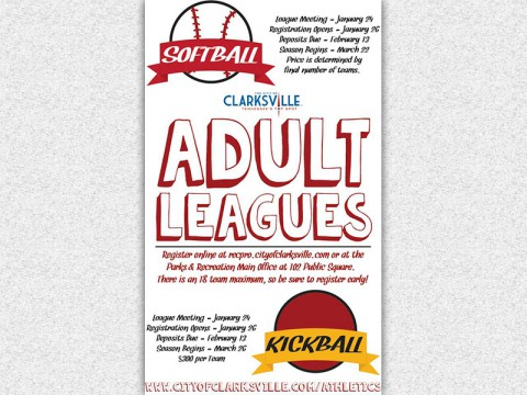 2015 Softball and Kickball Adult Leagues