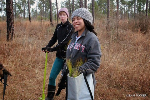 Austin Peay student Brianna Turnbo and Courtney Grisham plants trees in Texas while on winter break from APSU. (Lisa Tucker)
