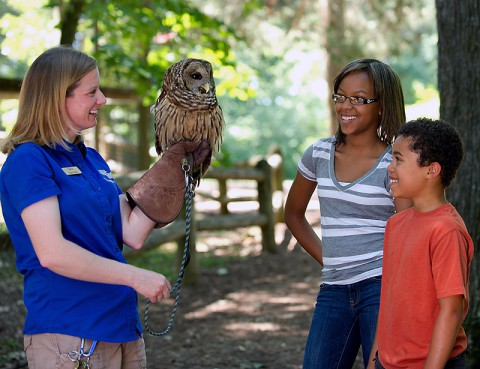 Land Between The Lakes Woodlands Nature Station offers a close up look at many native wildlife species. (O'Neil Arnold, KY Toursim)