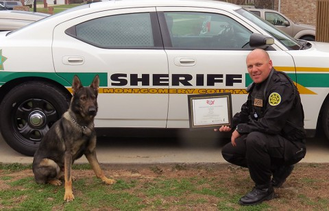 Montgomery County Sheriff's Office K9 K9 Merlin and Deputy Chris Bedell.