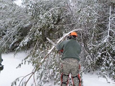A Tennessee National Guard Soldier of the 278th Armored Cavalry Regiment clears downed limbs from a roadway while assisting local residents in Cumberland County, Tennessee, after the winter storm devastated the region February 21st.