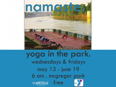 2015 Yoga in the Park