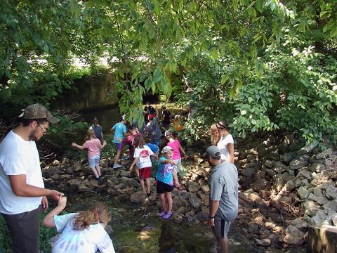 Junior Ranger Day Camp at Dunbar Cave State Natural Area.