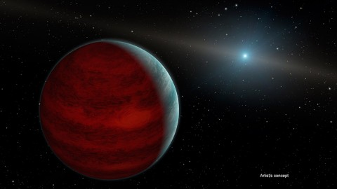 """This artist's concept shows a hypothetical """"rejuvenated"""" planet -- a gas giant that has reclaimed its youthful infrared glow. NASA's Spitzer Space Telescope found tentative evidence for one such planet around a dead star, or white dwarf, called PG 0010+280 (depicted as white dot in illustration). (NASA/JPL-Caltech)"""