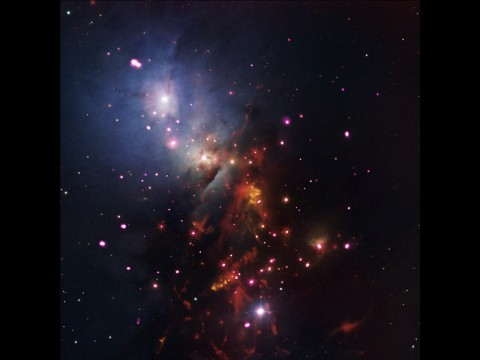This new composite image of stellar cluster NGC 1333 combines X-rays from NASA's Chandra X-ray Observatory (pink); infrared data from NASA's Spitzer Space Telescope (red); and optical data from the Digitized Sky Survey and the National Optical Astronomical Observatories' Mayall 4-meter telescope on Kitt Peak near Tucson, Arizona. (NASA/CXC/JPL-Caltech/NOAO/DSS)