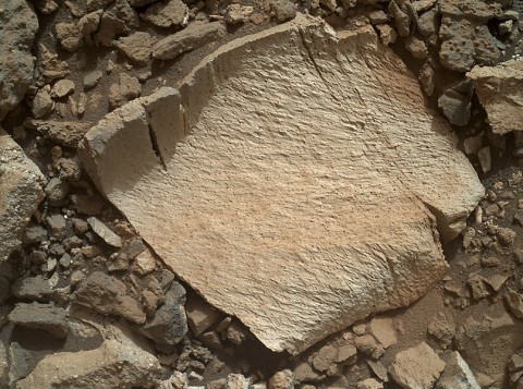 """A rock fragment dubbed """"Lamoose"""" is shown in this picture taken by the Mars Hand Lens Imager (MAHLI) on NASA's Curiosity rover. (NASA/JPL-Caltech/MSSS)"""