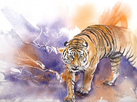 Sumatran Tiger. (Kitty Harvill)