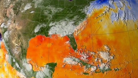 This map of ocean surface temperatures shows how warm waters in the North Atlantic fueled Hurricane Katrina. NASA and UCI researchers have found that the same conditions heighten fire risk in the Amazon basin. (Scientific Visualization Studio, NASA's Goddard Space Flight Center)