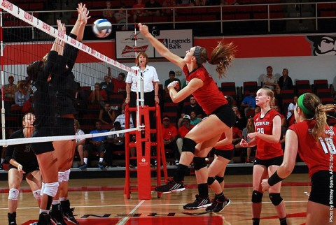 Austin Peay Women's Volleyball. (APSU Sports Information)