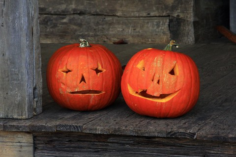 Jack-o-lanterns at LBL's The Homeplace. (Kasey Johnson)
