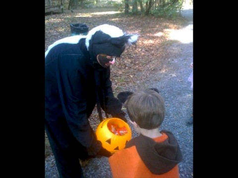Trick or treating along the Howl-O-Ween Trail. (Nicole Hawk)